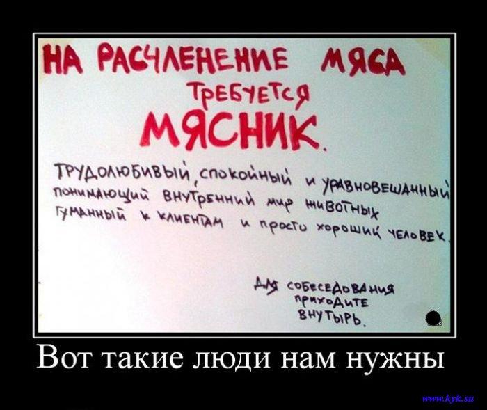 http://s1.uploads.ru/1IuEn.jpg
