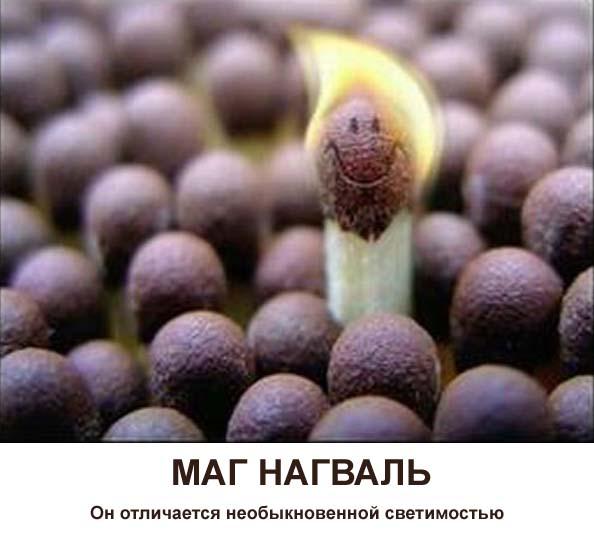 http://s1.uploads.ru/2z9BP.jpg