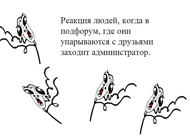 http://s1.uploads.ru/3U4e9.png