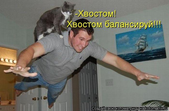 http://s1.uploads.ru/3Z6qs.jpg