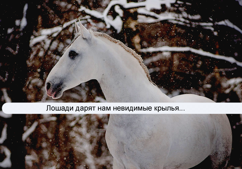 http://s1.uploads.ru/47DRw.png