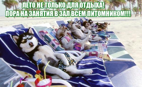 http://s1.uploads.ru/4oeJT.jpg