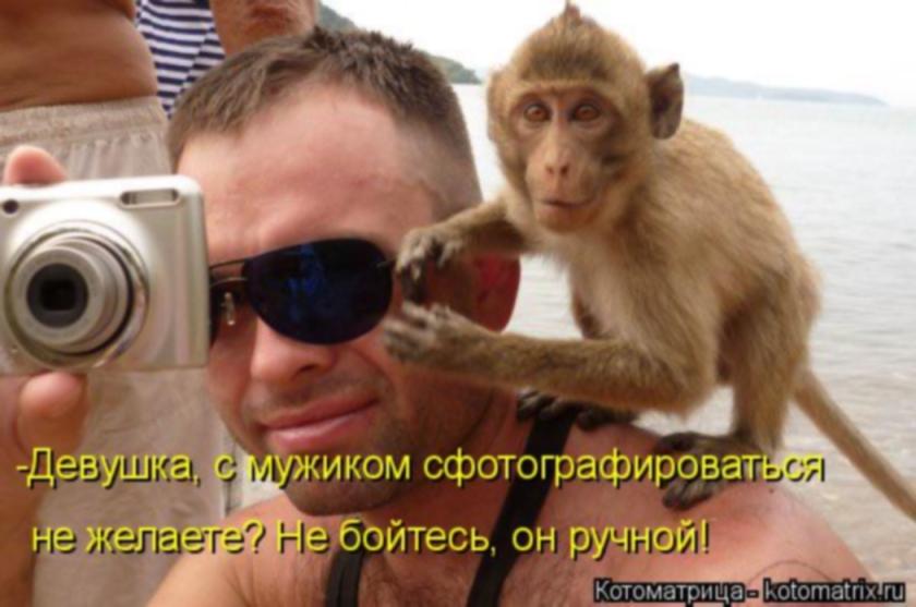 http://s1.uploads.ru/53FMi.jpg