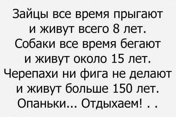 http://s1.uploads.ru/5MGRz.jpg