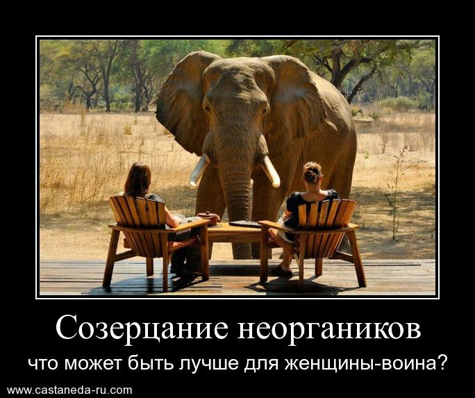 http://s1.uploads.ru/5lLDh.jpg