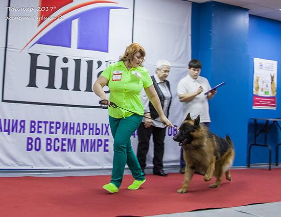 http://s1.uploads.ru/6vxN8.jpg