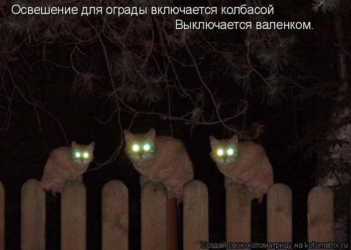 http://s1.uploads.ru/8Aht5.jpg
