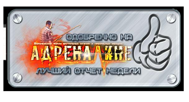http://s1.uploads.ru/DhuV2.png