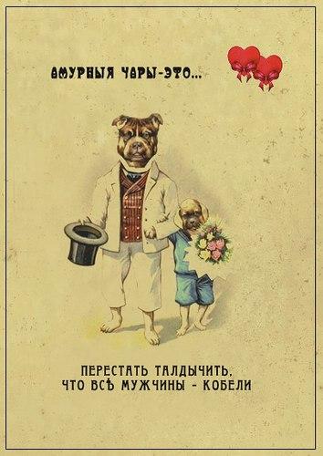 http://s1.uploads.ru/DokcO.jpg