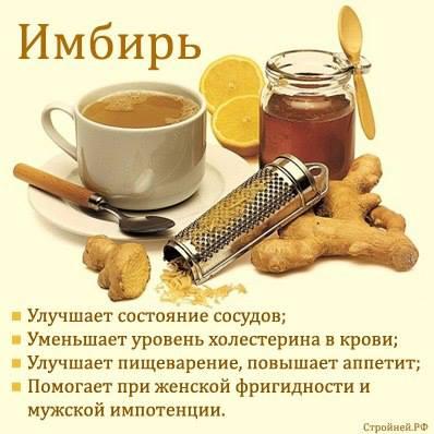 http://s1.uploads.ru/F4KG7.jpg
