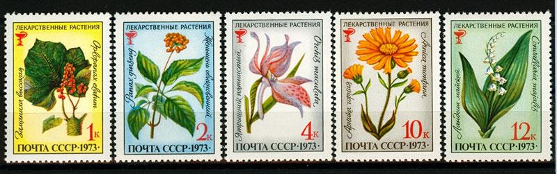 http://s1.uploads.ru/F6U0j.jpg