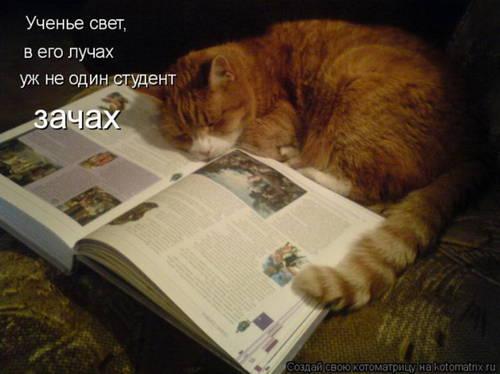 http://s1.uploads.ru/FKvfa.jpg