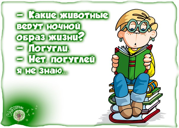 http://s1.uploads.ru/FS2V7.jpg