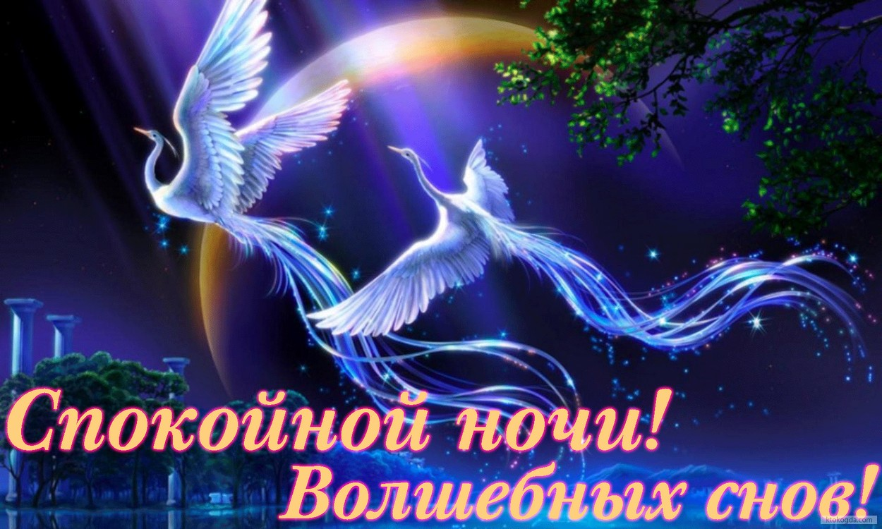 http://s1.uploads.ru/FpsgA.jpg