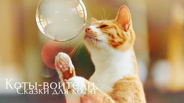 http://s1.uploads.ru/HvXUE.jpg