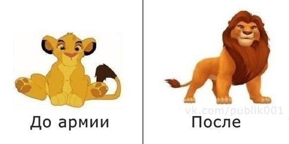 http://s1.uploads.ru/IUEdr.jpg