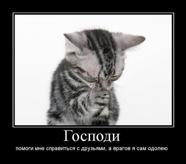 http://s1.uploads.ru/JiQb4.png