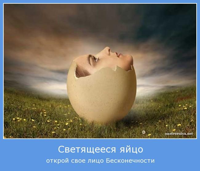 http://s1.uploads.ru/K4oYW.jpg