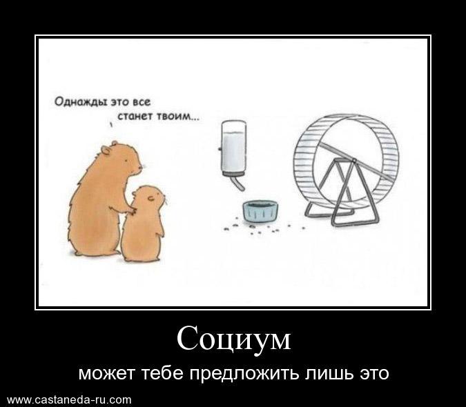 http://s1.uploads.ru/Kcbpk.jpg
