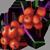 Горькие ягоды