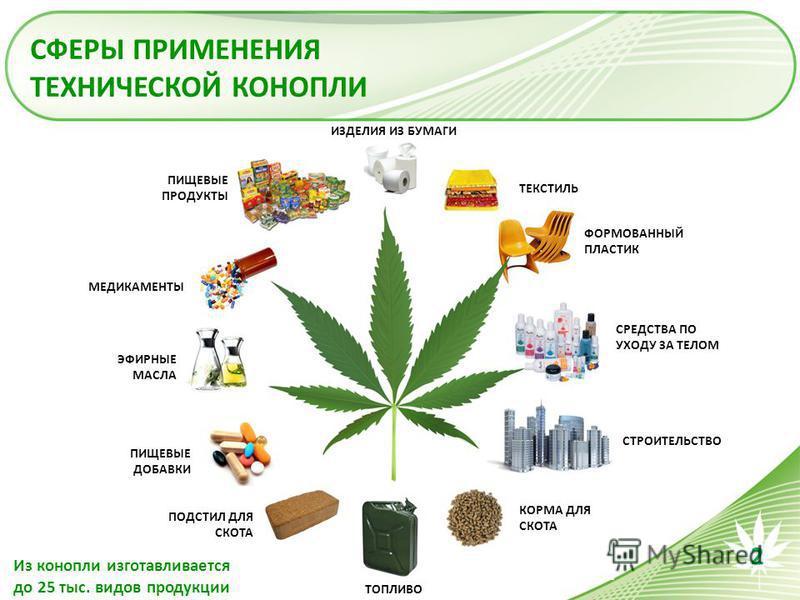 http://s1.uploads.ru/MxNAf.jpg