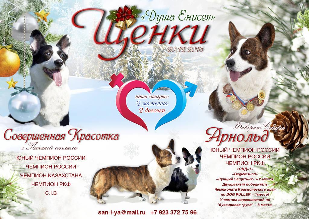 http://s1.uploads.ru/NcIri.jpg