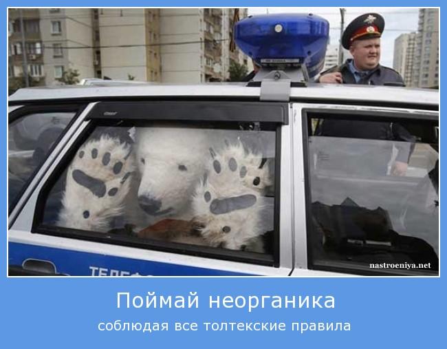 http://s1.uploads.ru/PGoO1.jpg