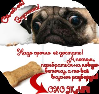 http://s1.uploads.ru/PhEoc.png