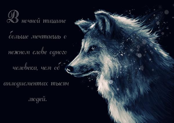 http://s1.uploads.ru/QF1yZ.png