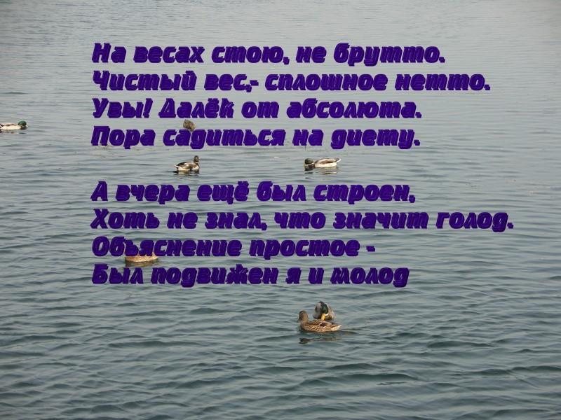 http://s1.uploads.ru/S68lU.jpg