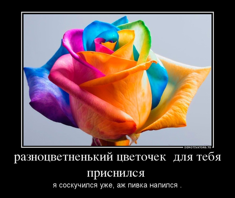 http://s1.uploads.ru/Tsfzo.jpg