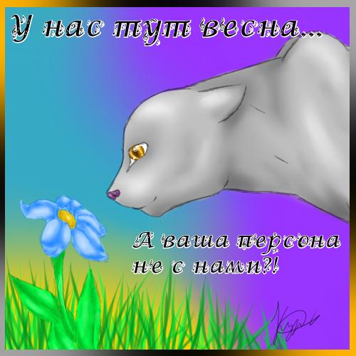 http://s1.uploads.ru/U8ZkL.png