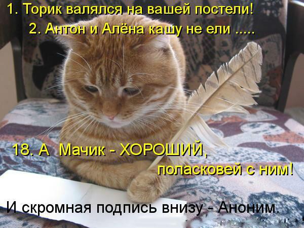 http://s1.uploads.ru/X9Z1D.jpg