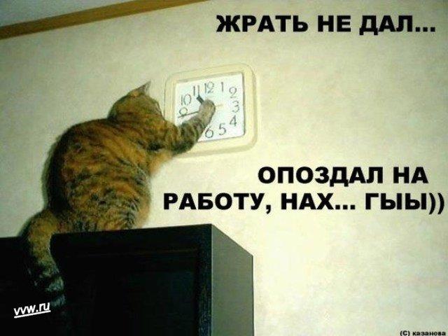 http://s1.uploads.ru/Xl0K3.jpg