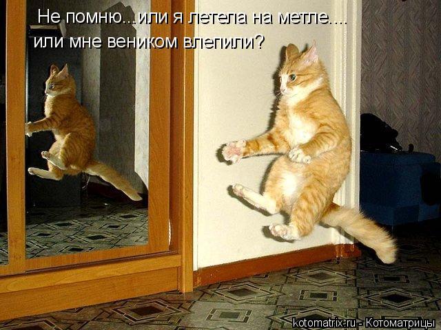 http://s1.uploads.ru/bKzar.jpg