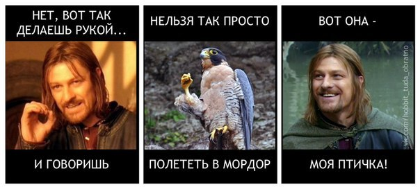 http://s1.uploads.ru/fY2ju.jpg