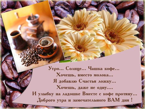 http://s1.uploads.ru/g0kua.jpg