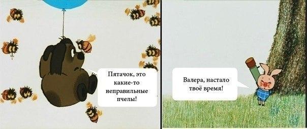 http://s1.uploads.ru/gG5sk.jpg