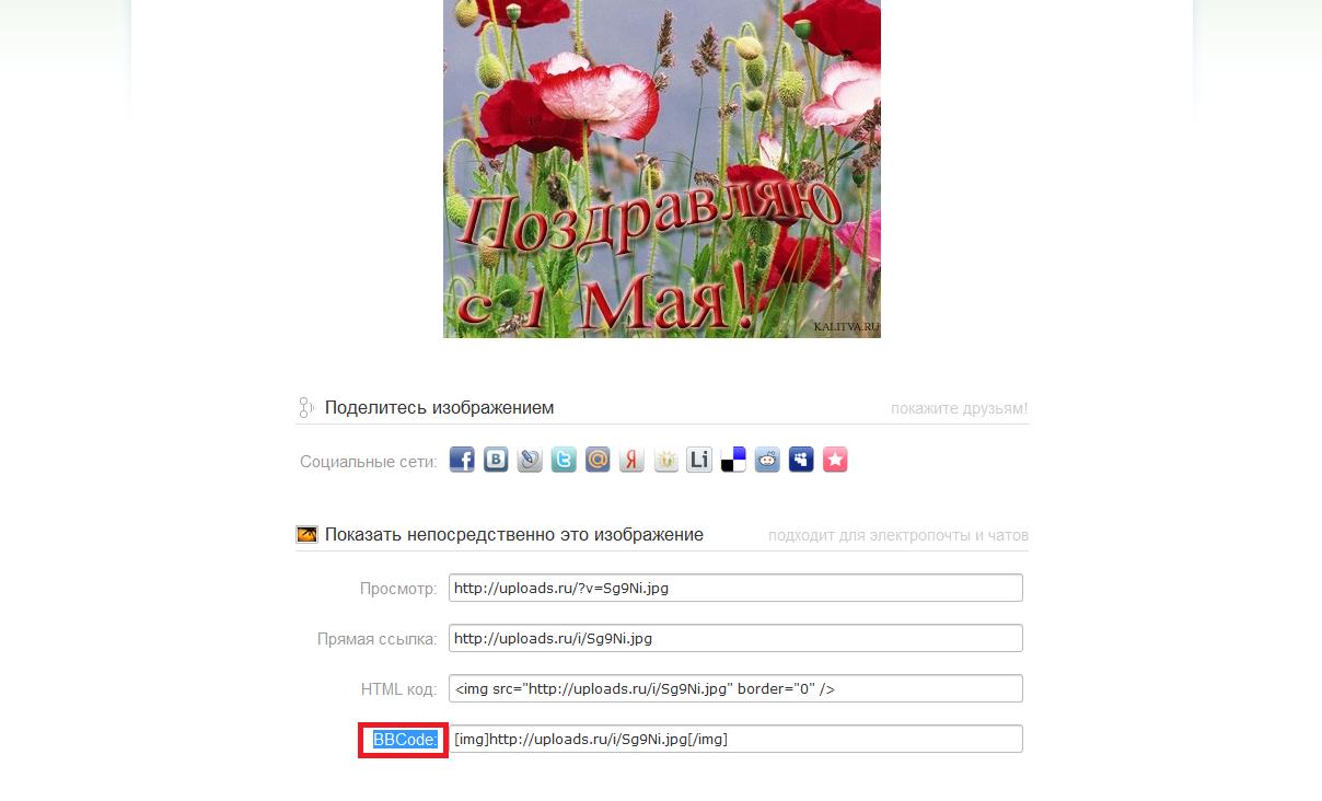 http://s1.uploads.ru/i/4Btdf.png