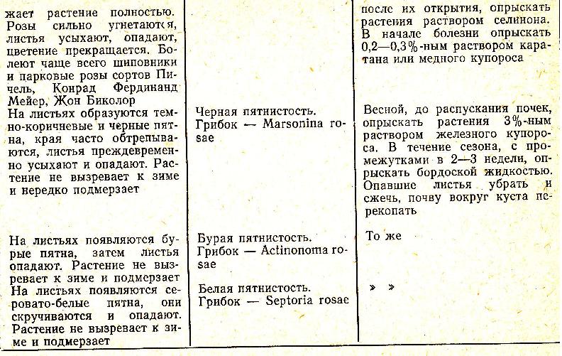 http://s1.uploads.ru/i/CiLmG.png
