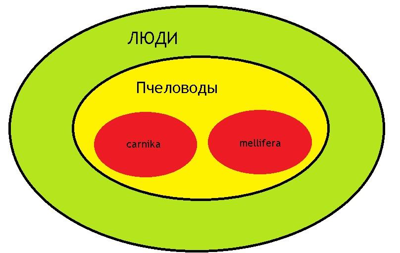 http://s1.uploads.ru/i/I3mty.jpg