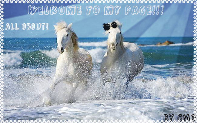 http://s1.uploads.ru/i/IO0QX.jpg