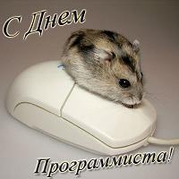 http://s1.uploads.ru/i/JVUuB.jpg