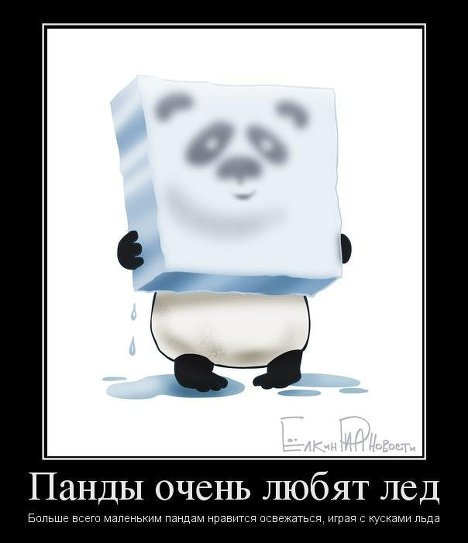 http://s1.uploads.ru/i/KzVd8.jpg