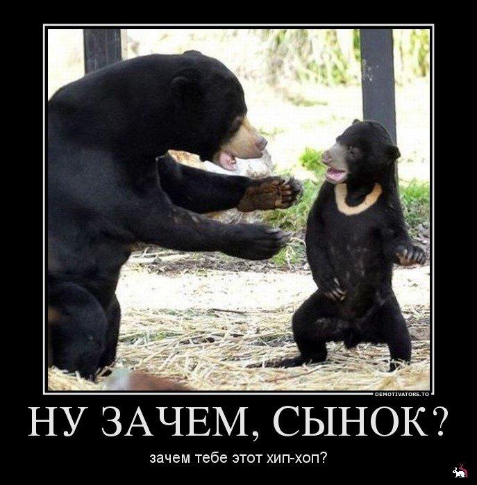 http://s1.uploads.ru/i/N0yPl.jpg