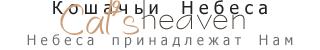 http://s1.uploads.ru/i/QHz0L.png