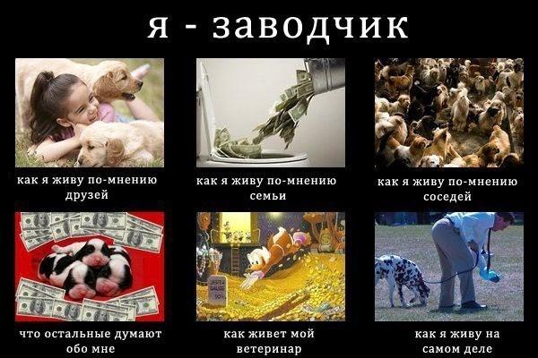 http://s1.uploads.ru/i/RCuVW.jpg