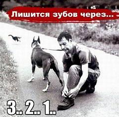http://s1.uploads.ru/i/e8XwD.jpg