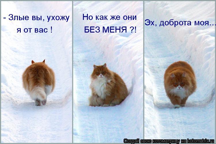 http://s1.uploads.ru/i/wSYE5.jpg