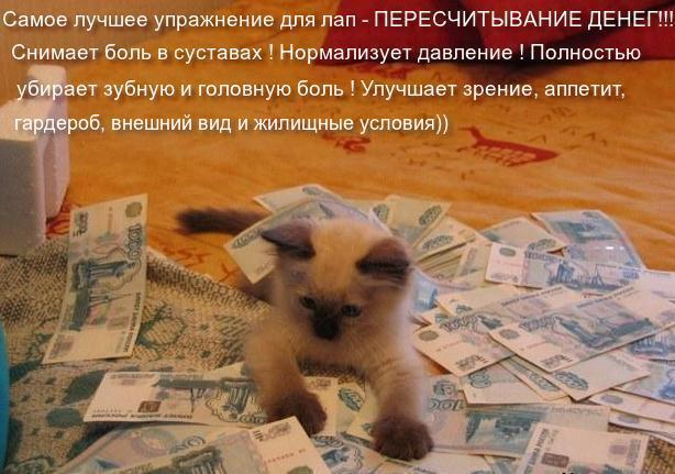 http://s1.uploads.ru/jPDLT.jpg